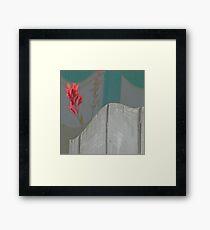 Red Pops Out Framed Print