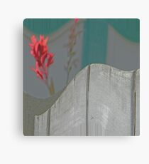 Red Pops Out Canvas Print