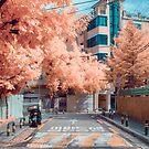 Dolgoji, Seoul by noealz