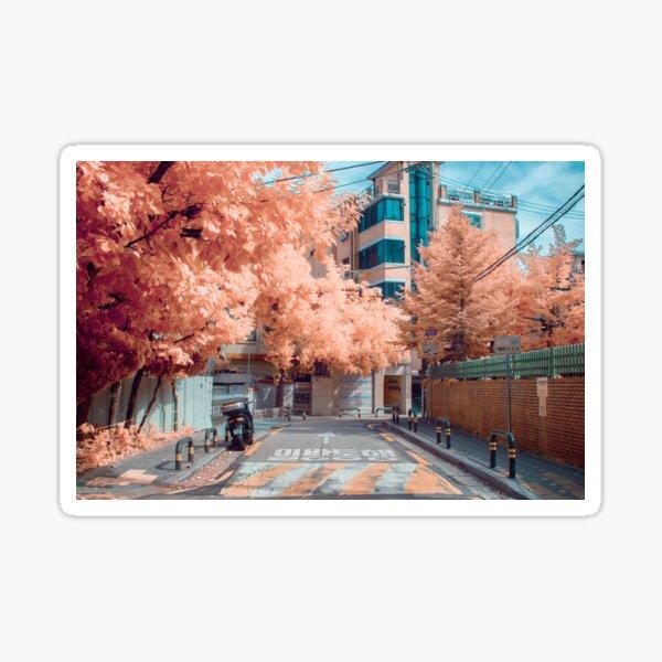 Dolgoji, Seoul Sticker