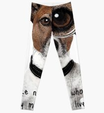 Jack Russel Leggings