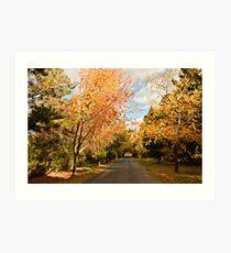 Autumn at Hill End Art Print