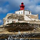 Madonetta Lighthouse by Alessandra Antonini