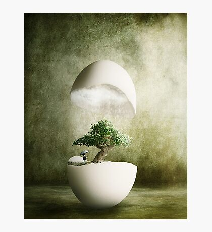 Hatching Thoughts Photographic Print