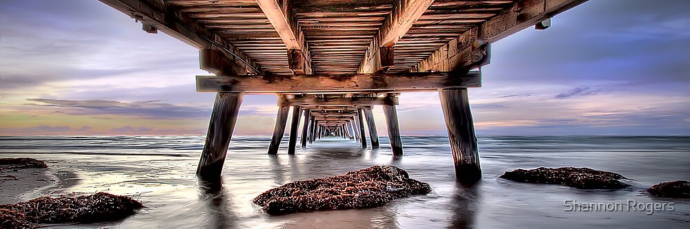 Vanishing Point Panorama by Shannon Rogers