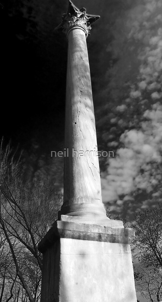 Constantinople column by neil harrison
