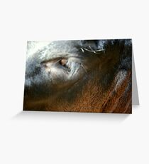 Dexters Long Lashes Greeting Card