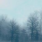 Winter Morning by Milena Ilieva