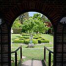 Secret Garden by Dean Messenger