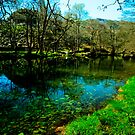 Tree Lined  River Brathay Near Chapel Stile - Lake District by John Hare