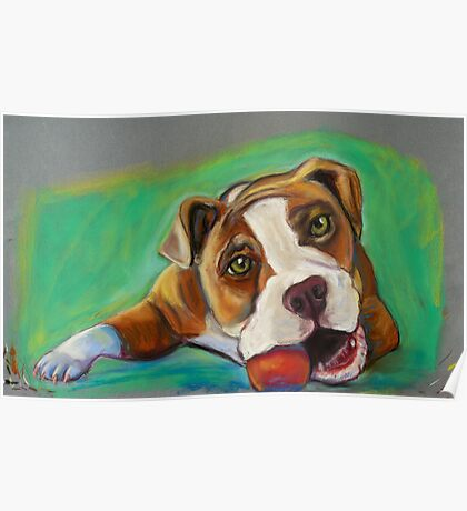 Bulldog with Red Ball Poster