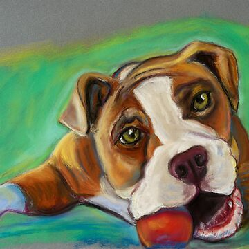 Bulldog with Red Ball by Annimalloverf