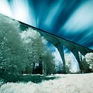Saltburn Viaduct (IR) by PaulBradley