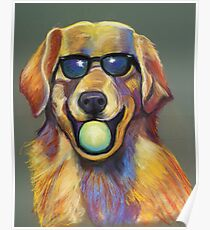 Golden Retriever with Tennis Ball Poster