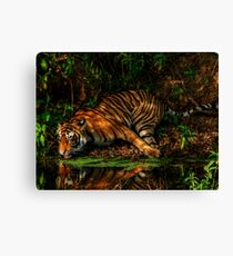 Paying homage to the Jungle King Canvas Print