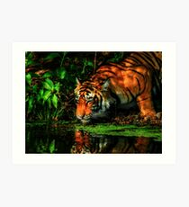 Paying homage to the Jungle King Art Print