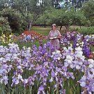 Iris Blooms, Kew Gardens, UK. by johnrf