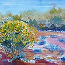 Yellow bush and blue scrub outback Australia by Virginia McGowan