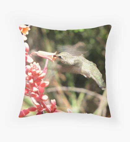 Anna's Hummingbird ~ Nippin' the Nectar Throw Pillow