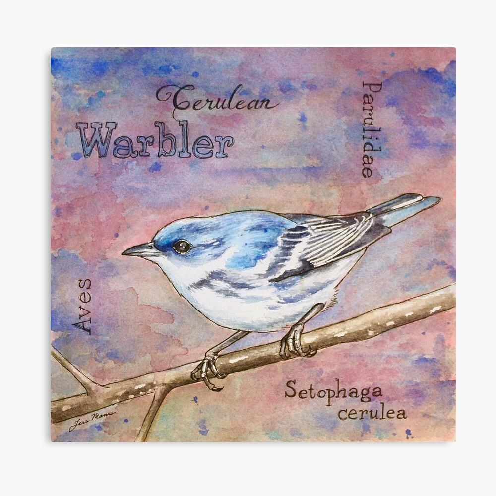 Cerulean Warbler Watercolor Painting Canvas Print