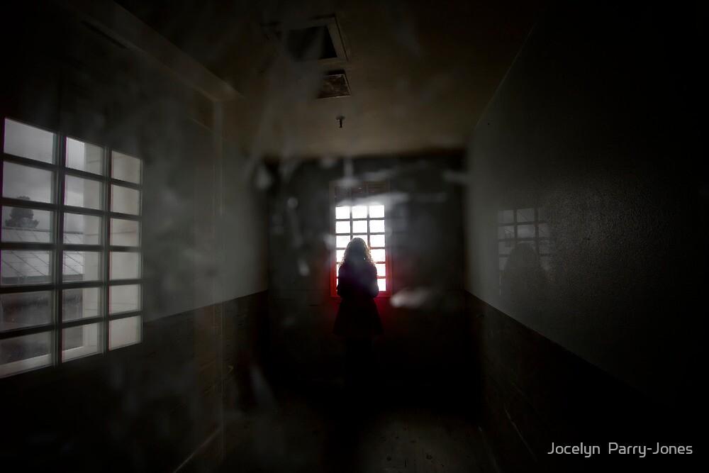 The longing by Jocelyn  Parry-Jones