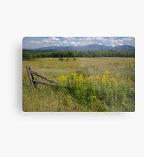 White Mountains & Meadows Metal Print