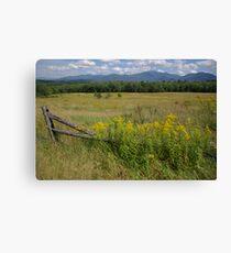 White Mountains & Meadows Canvas Print