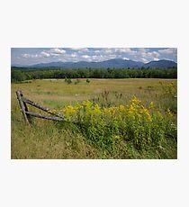 White Mountains & Meadows Photographic Print