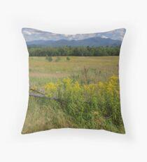 White Mountains & Meadows Throw Pillow