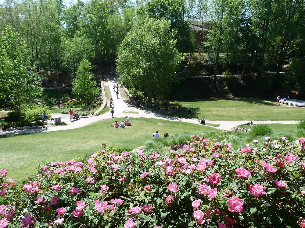 Springtime in the Park by Gordon Taylor