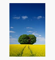 Heart of the Cotswolds, England Photographic Print