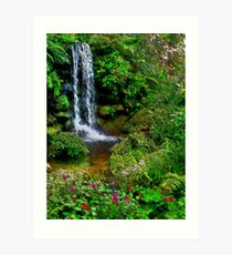 The Beauty Within : Rainbow Springs National Park Art Print