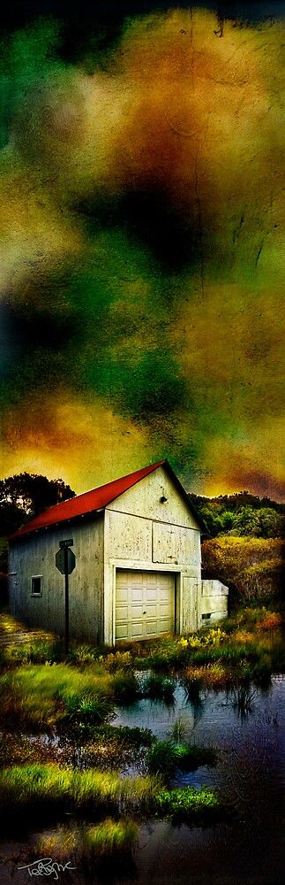 Watery Barn by Ted Byrne