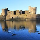 Caerphilly Castle by Vicki Spindler (VHS Photography)