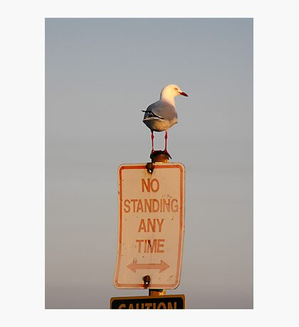 No Standing! Photographic Print