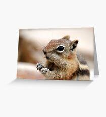 Golden Mantled Ground Squirrel (3) Greeting Card