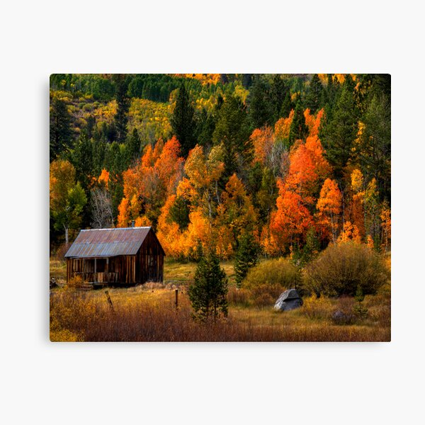 Hope Valley, CA Canvas Print