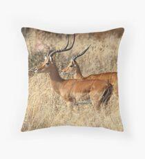 Male Impala, Serengeti, Tanzania. Throw Pillow
