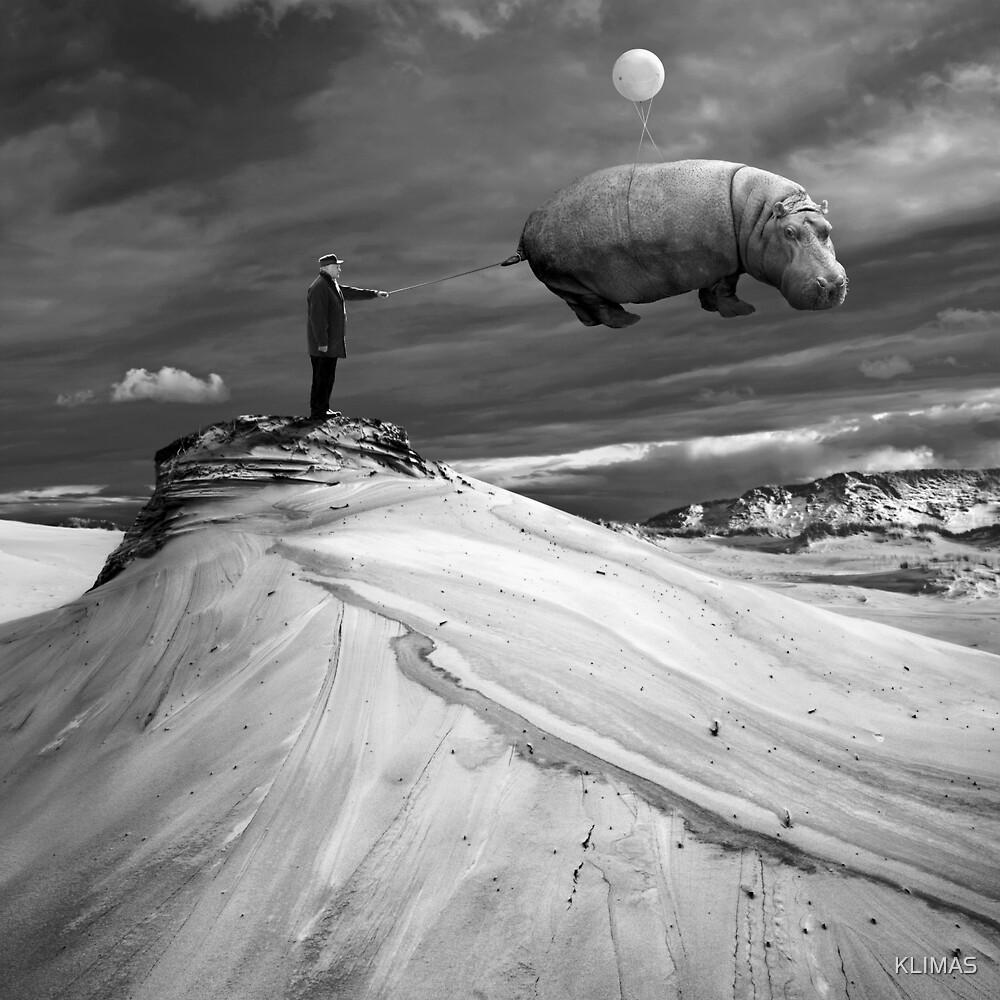 Tamer by KLIMAS