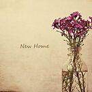 New Home by Anne Staub