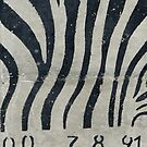 Zebra graffiti in concrete wall photo by hypnotzd