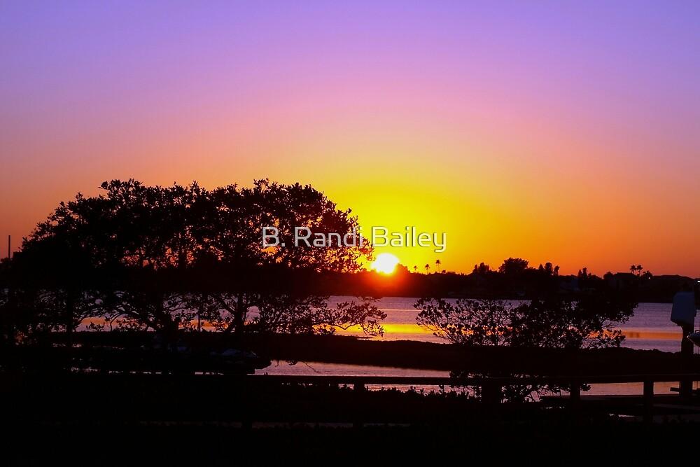 Rose cast over the horizon by ♥⊱ B. Randi Bailey