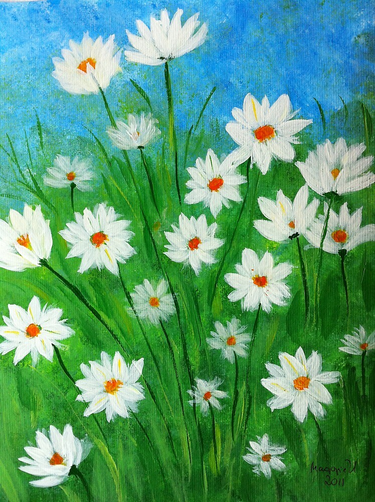 Daisies in the field by maggie326