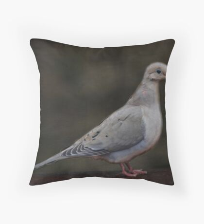 Mourning Dove Beauty Throw Pillow