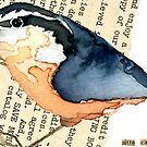 Red-Breasted Nuthatch (Sitta canadensis) by Carol Kroll