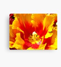 Yellow Red Tulip Flower art prints Floral Baslee Troutman Canvas Print