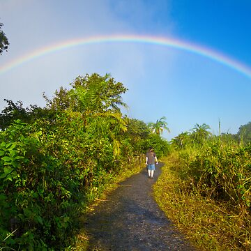 { somewhere over the rainbow } by capturedbybrook