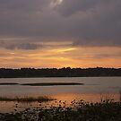 Lakeview Sunset by Laurie Perry