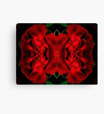 Red Corset Canvas Print