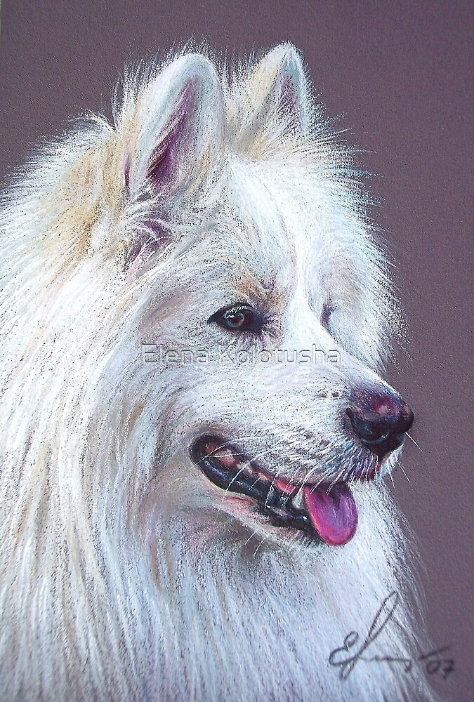 Samoyed dog by Elena Kolotusha